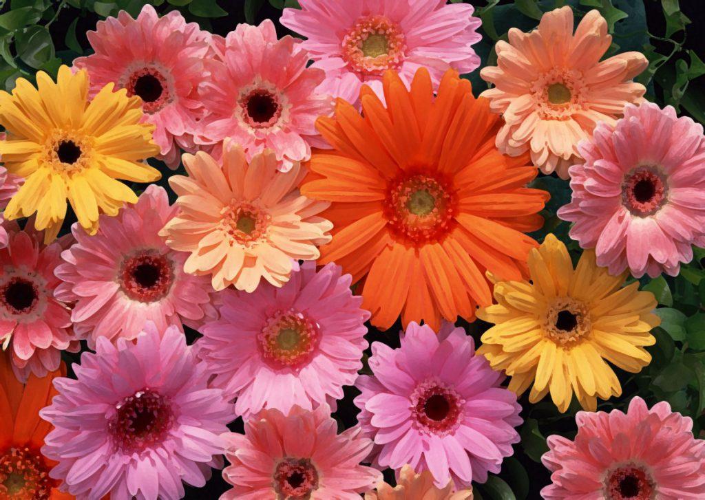 flower-back1400